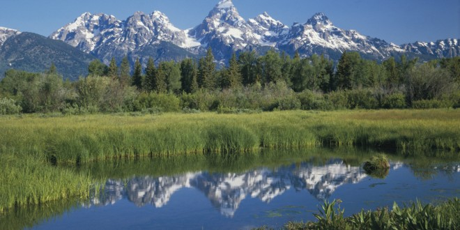 USA, Wyoming, Grand Teton National Park, reflections in Beaver Pond