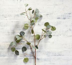 faux-silver-dollar-eucalyptus-branch-o