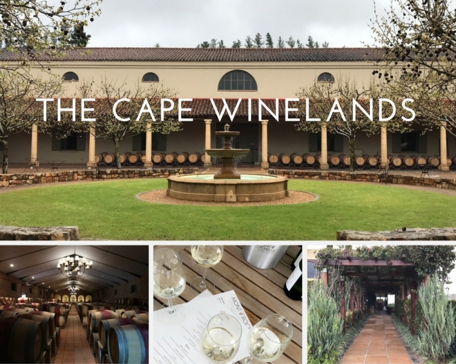 The Cape winelands.jpg